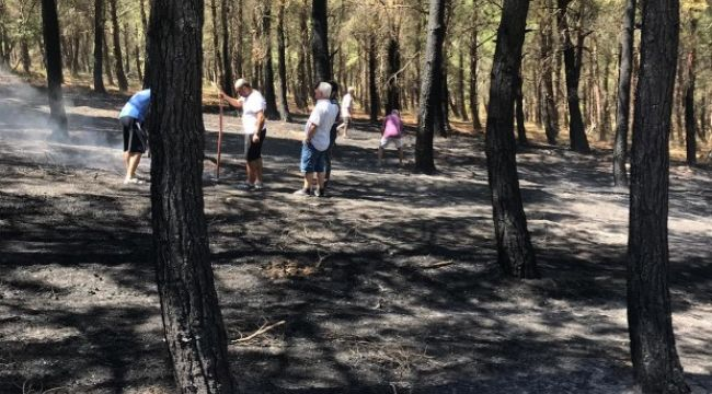 5 dekarlık orman yandı