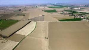 Tarım arazilerinin satış süreleri uzatıldı