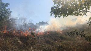 Çalılık alanda yangın