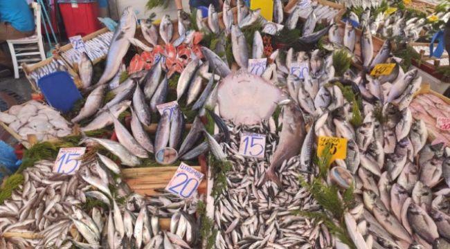 Bulgarlardan balığa yoğun ilgi