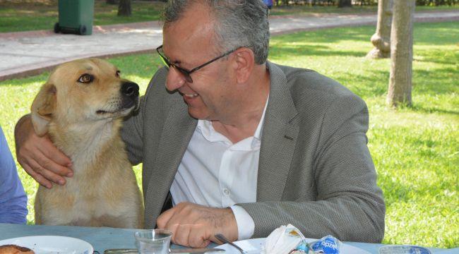 'Hayvanlarımızı 1 gün değil her gün hatırlıyoruz'