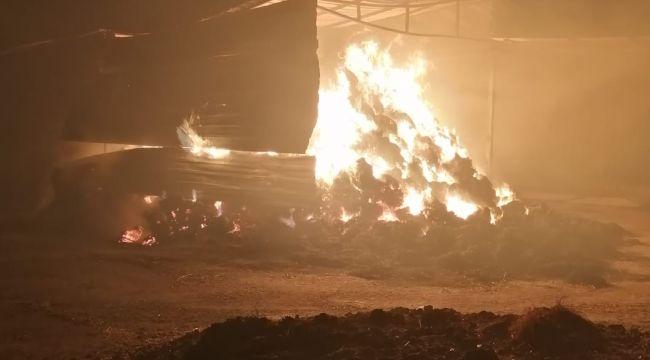 Kundaklama sonucu 750 saman balyası yandı