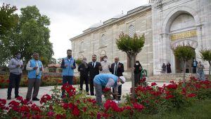 Selimiye'de şükür kurbanı kesildi