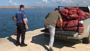 Edirne'de 1 ton kaçak midye ele geçirildi