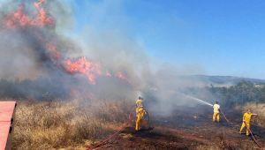 Çevrecilerden 'ormanlarda mangal yakılmasın' tepkisi