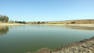 Kuruyan göletteki balıklara can suyu