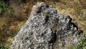 Traklara ait tarihi 'güneş diski' bulundu