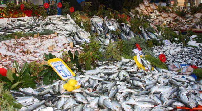 Balıkcılıktaki yeni düzenleme fiyatlara yansıdı