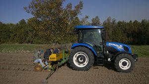 Lavantanın Trakya'da ekim alanı yaygınlaşıyor