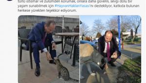Hayvan haklarına Gürkan'dan destek