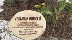 TÜ'ye yağmur bahçeleri kuruldu