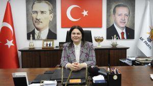 'Edirne modern dünyaya yüzünü dönmüş dev bir Çınar gibidir'