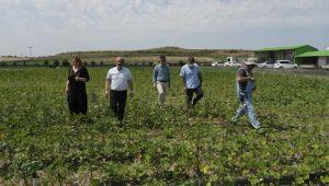 İyi tarım uygulamaları yerinde incelendi
