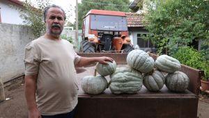 Karaağaç halkı festivali dört gözle bekliyor